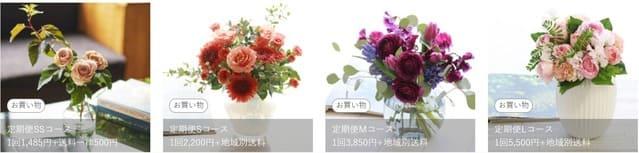 青山フラワーマーケットサブスクプランのお花ボリューム一覧画像