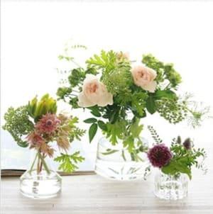 青山フラワーマーケット定期便ライフスタイルコースのお花
