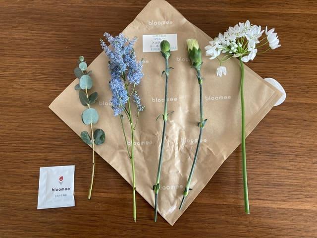 bloomeeのお花(コワニー、アスチルベ、カーネーション、グリーン)