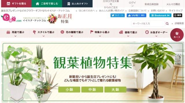 イイハナドットコムの公式サイト画像