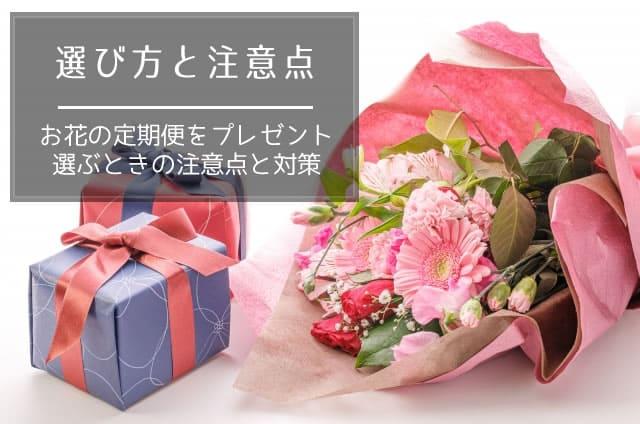 お花の定期便をプレゼントで利用するときの選び方と注意点