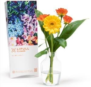 LIFULL FLOWER(ライフルフラワー)ライトプランのお花