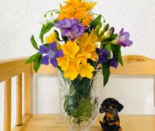medeluのお花(anyroom basic)
