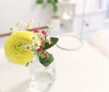 medeluのお花(anyroom lite)