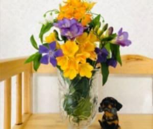 medelu(メデル)anyroomプラン(basic)のお花の画像